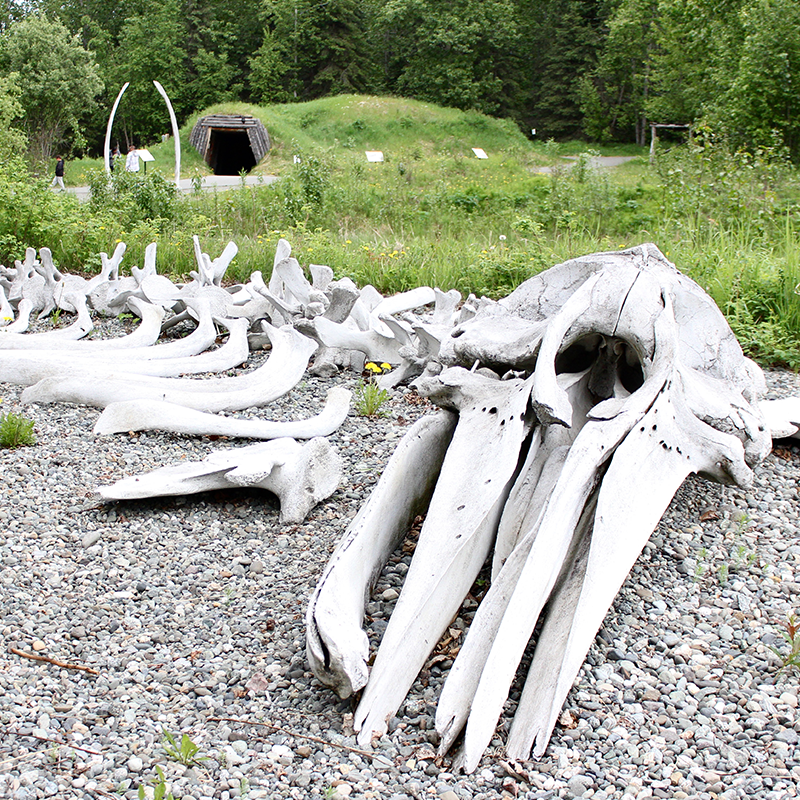 Whale bones at the Alaska Native Heritage Center in Anchorage.
